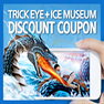 Trick Eye Museum Discount Coupon