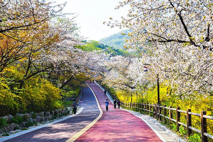 Image result for công viên namsan