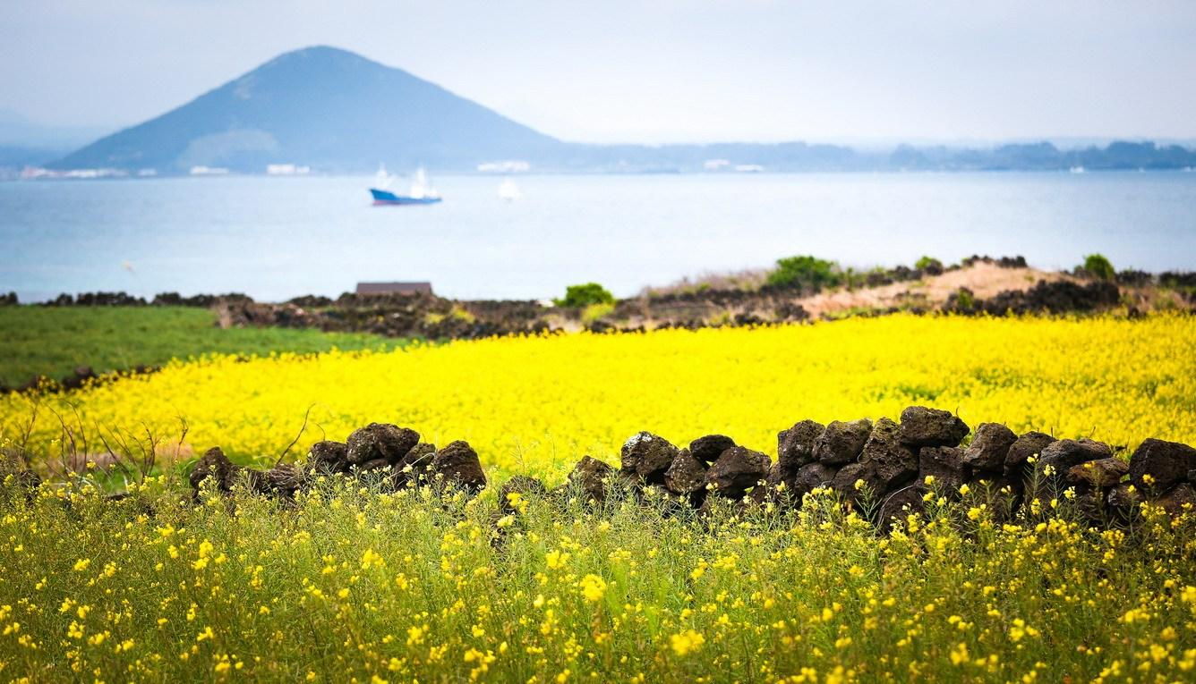 Thời tiết trên đảo Jeju